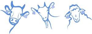 Logo Pretoria