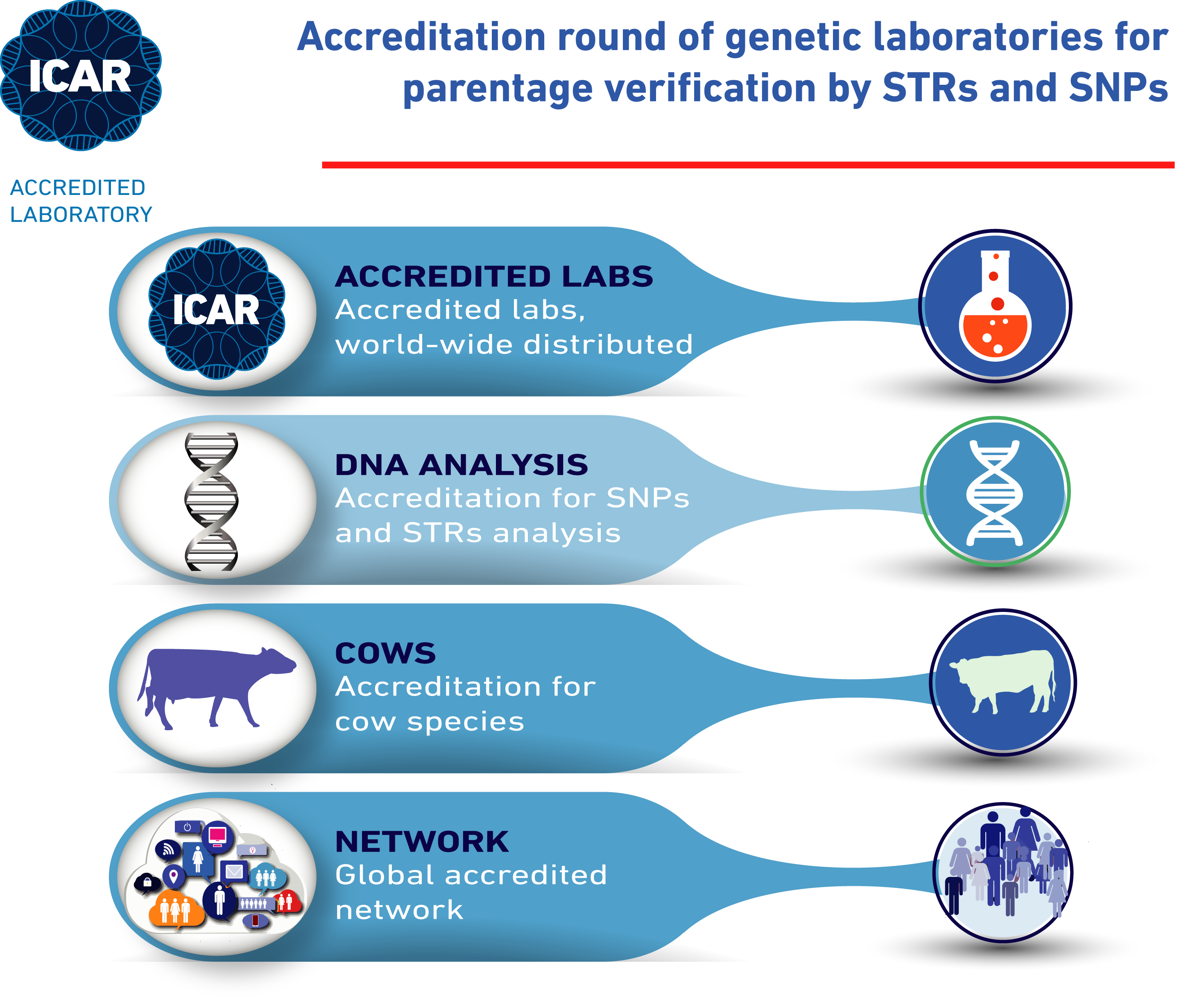Accredited laboratories for parentage verification in cattle by accredited laboratories for parentage verification in cattle by snps and strs xflitez Choice Image