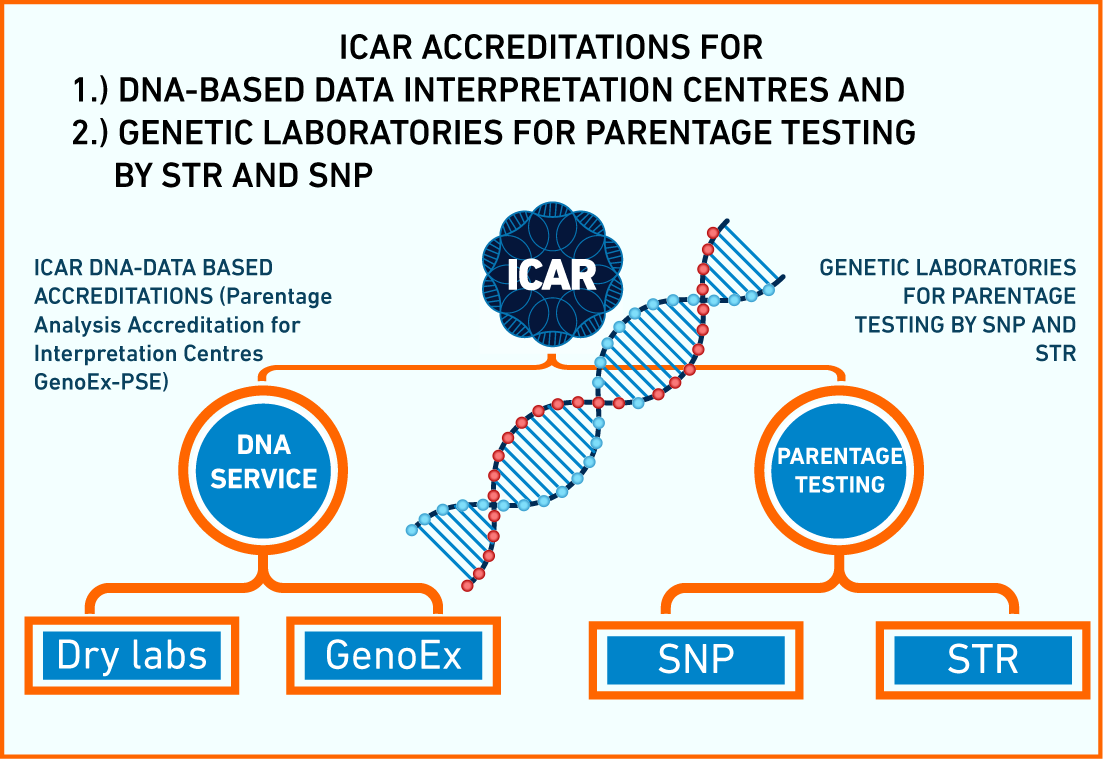 Two dna based services icar during the icar and interbull meetings in chile at the end of october 2016 the following two services were introduced to icar members and the official 1betcityfo Gallery